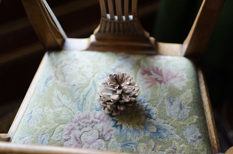 An antique chair with a colourful but slightly faded tapestry seat with a pine cone on Antique Tapestry Antique Chair Antique Chairs Antique Tapestry Antique Tapestry Chair Close-up Day Flowers Indoors  Lone Open Pine Cone No People Open Pine Cone Single Chair