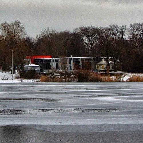 Sklblog Hildesheim Hohnsen Laufen Run Winter