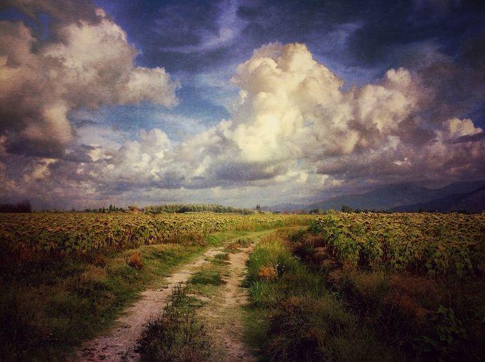 EyeEm Best Shots NEM Submissions NEM Landscapes NEM Painterly NEM Mood