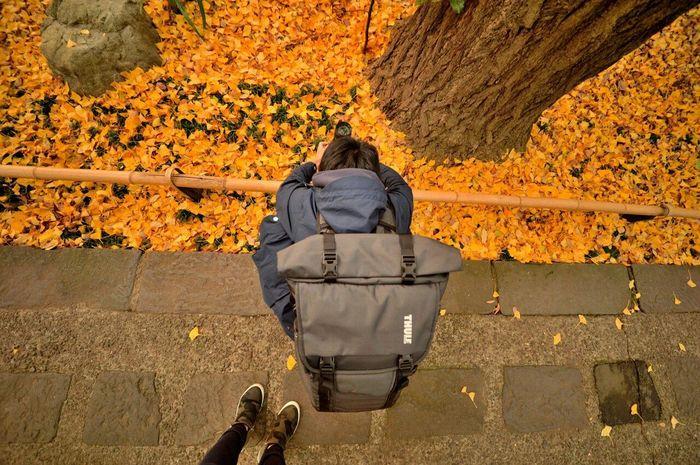 Taking Photos Enjoying Life Nikon Df Autumn Autumn🍁🍁🍁 Boy Squat Ginkgo Portrait あしもとの景色