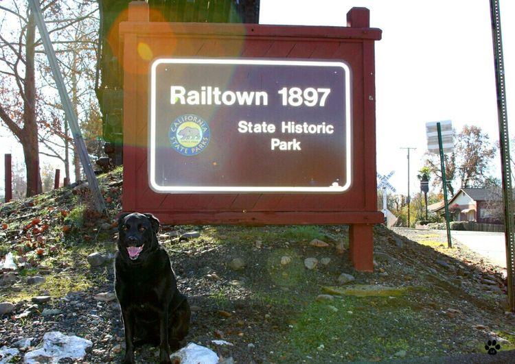 Railtown 1897