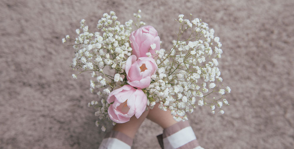 Brides wanna be Tulip Human Hand Flower Flower Head Pink Color Child Holding Childhood Gift Close-up Plant Pale Pink Wild Rose In Bloom Candy Store Blossom Blooming