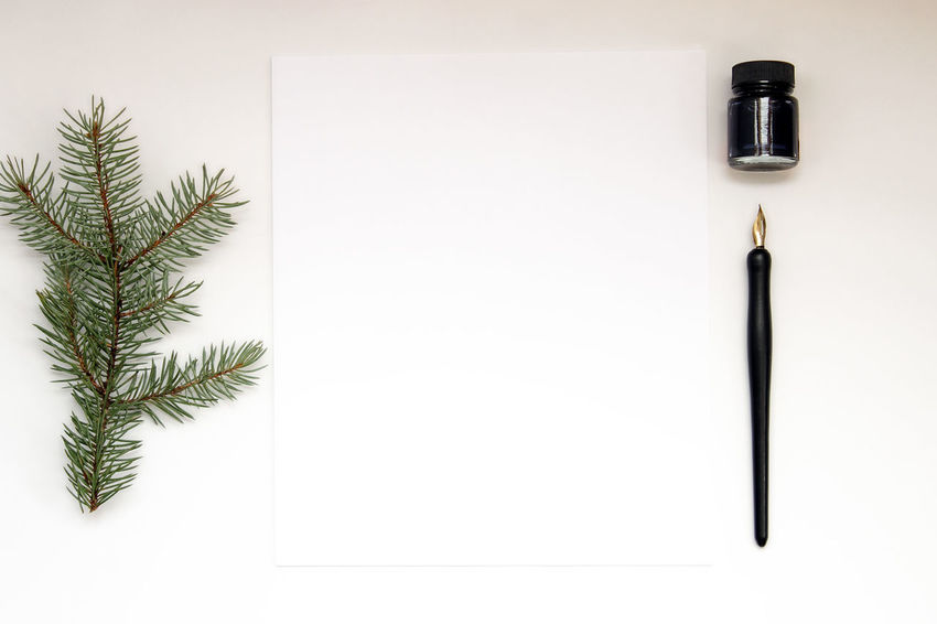 Nature notes Blank Paper Calligraphy Copy Space Desk Desk Top Nature Office Pen Pen And Ink Spruce Studio Shot White Background Winter Work Writing