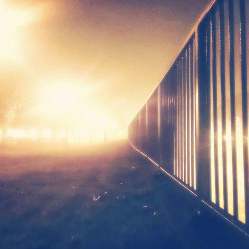 Foggy night. Foggy Night Spooky Atmosphere EyeEm Best Shots - Autumn / Fall Night Lights