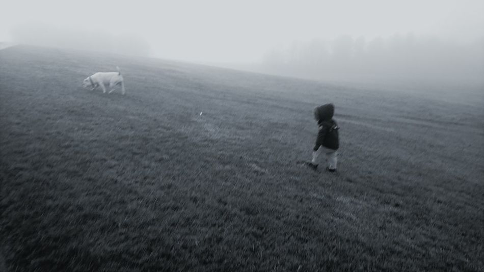 Full Length Landscape One Person Beauty In Nature Day Childhood Fog Grass Nature Oldthymedorset Bulldog Bonding One Animal