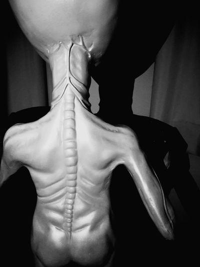 Alien   extraterrestre   инопланетянин Alien Charleroi, Belgium SHAKURNTM By Shakurntm Extraordinary  Extraterrestre Extraterrestrial  Alien Invasion Men Close-up Black Background Kidnapping