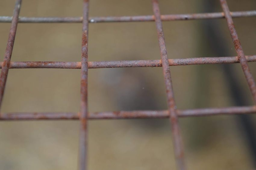 Full Frame Backgrounds Focus On Foreground Metal No People Close-up Rusty Day Outdoors