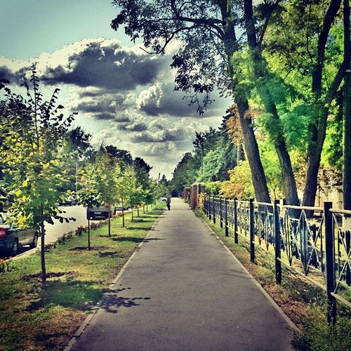 опаздываю ...Снова Азов деревья природа улица дорога небо облака