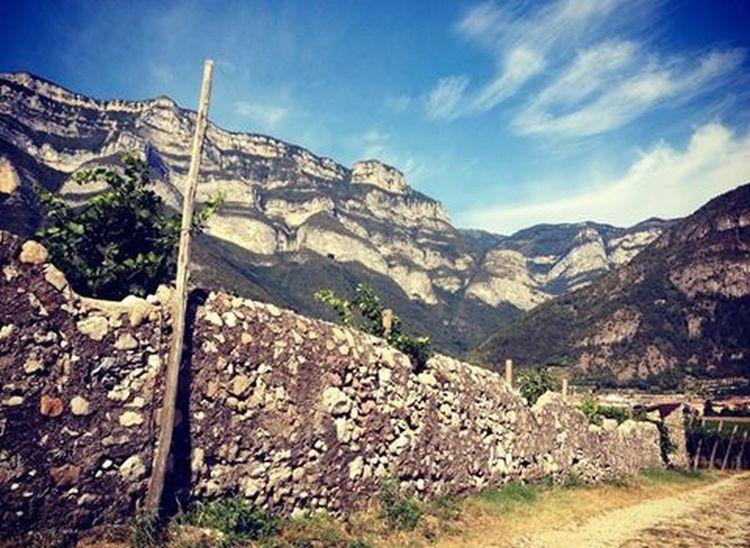 Sur la route des vins en Italie. Italia Italie Vins Route Des Vins Roadtrip