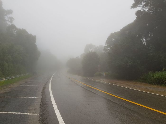 Fog Road Mountain Weather Wet Sky