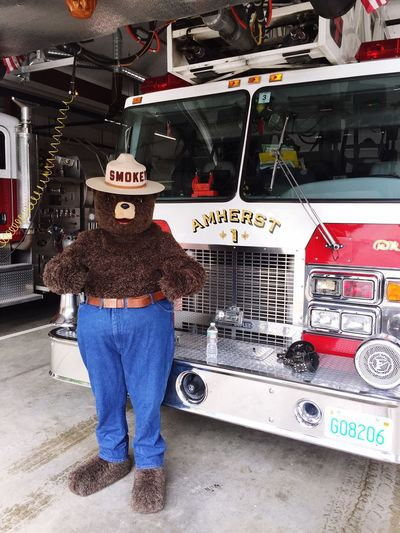 You too can prevent forest fires! Smokey