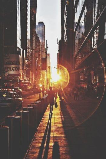 RePicture Love Sun Light Adventure Newcity