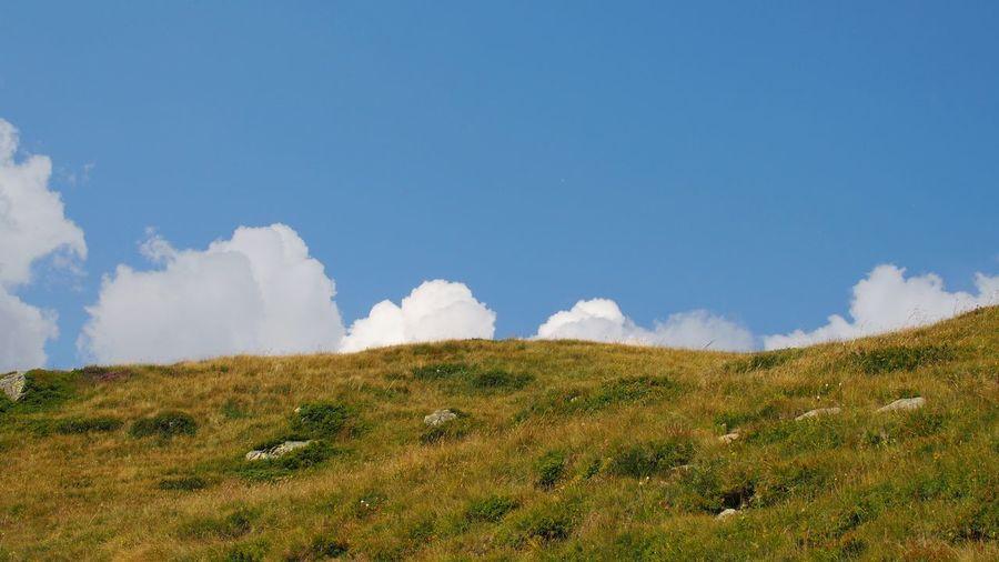Fleecy Clouds Hill Blue Summer Sky Grass Landscape