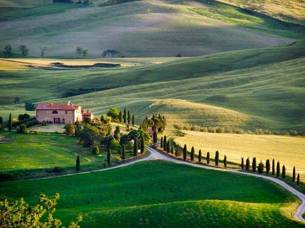 Val d 'Orcia - Toscana Valdorcia Toscana Italia Italy Tuscany Tuscanygram Tuscany Countryside Landscape Landscape_Collection Landscape_photography Landscape_lovers EyeEm Best Shots EyeEm Nature Lover EyeEm Gallery EyeEm Best Edits EyeEmBestPics EyeEm Best Shots - Nature Eye Em Nature Lover