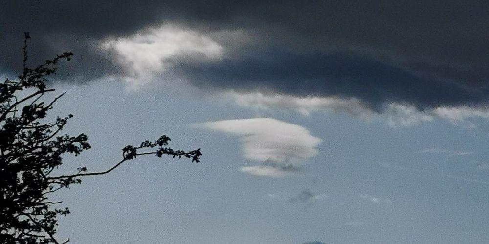 UFO cloud Tree