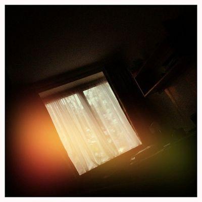 Short afternoon Hipstamatic Jane Blanko Dreampop