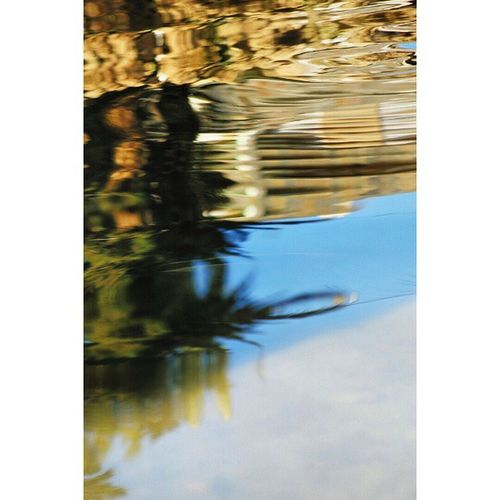 Réflexion Reflect Reflejos Igers_murcia rioseguravscocam visual_world vscocamgood instalike instamoment ig_exquisite pickoftheday pictureoftheday photooftheday fotografvakti fototag_ig fotofanatics followinstagram fotosparacomentar fotodeldia clubepixel clubofthephoto clikat instaart instaabenza movilgrafias