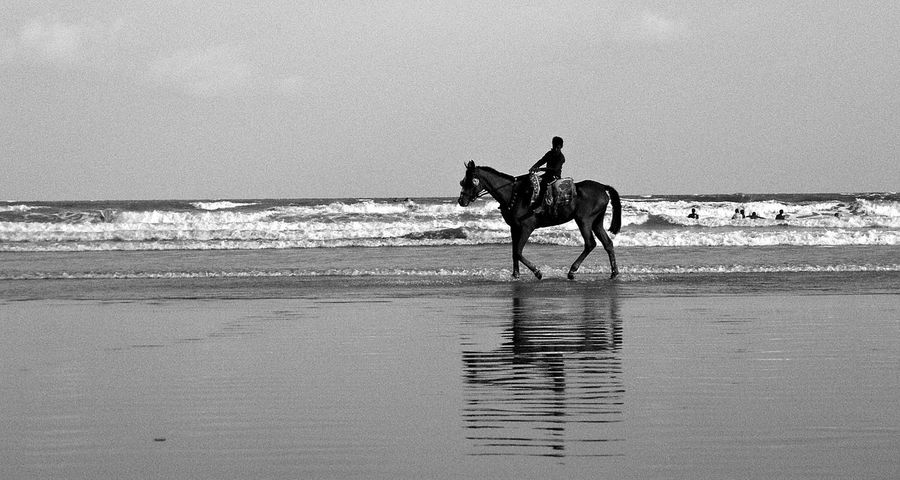 Horse Ride on Beach Beach Beach Photography Beachphotography Blackandwhite Coastline Desert Escapism FootPrint Full Length Getting Away From It All Hobbies Horizon Over Water Negative Space Outdoors Recreational Pursuit Sand Sea Shore Summer Surf Vacations Water Wave Weekend Activities