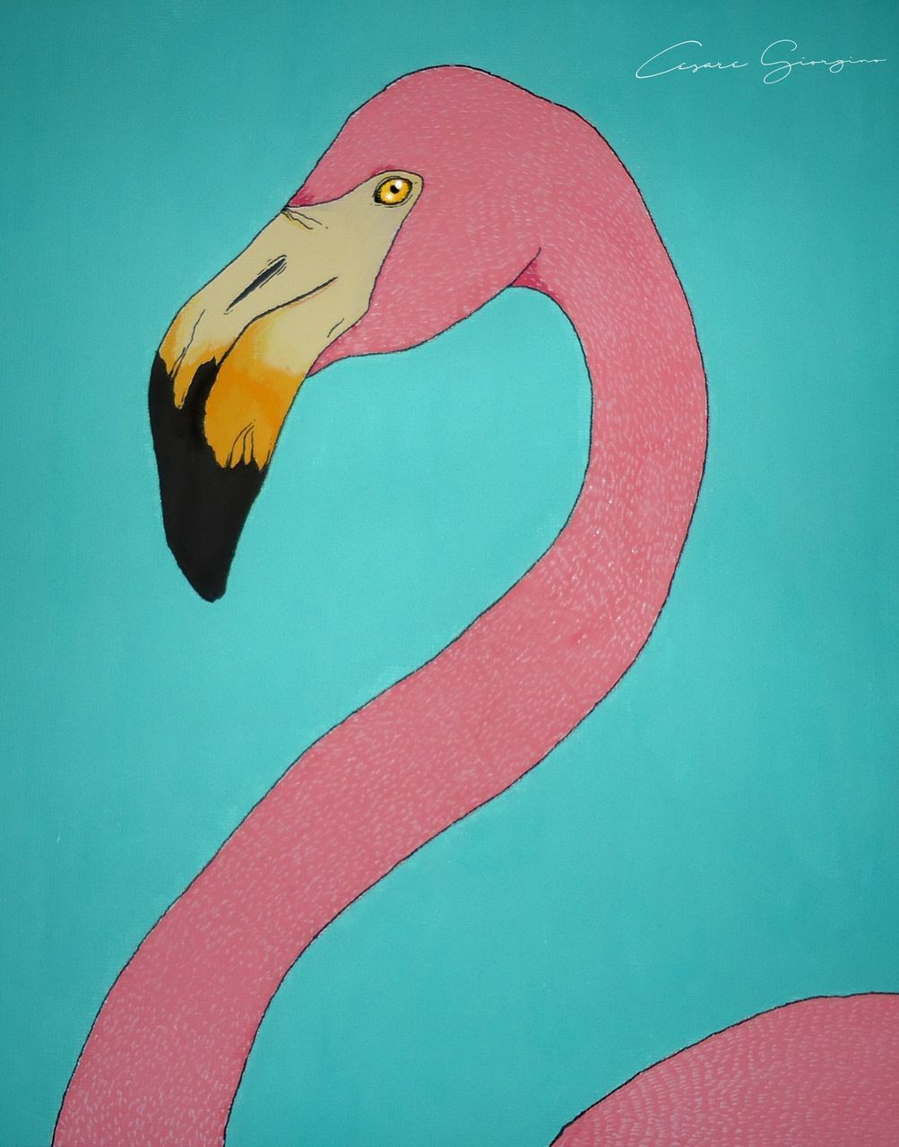 multi colored, red, no people, yellow, water, swimming pool, blue, day, swimming, flamingo, close-up, animal themes, bird, outdoors