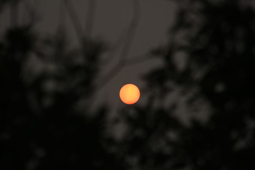 Evening sun in a hazy sky Astronomy Beauty In Nature Circle Dark Geometric Shape Haze Low Angle View Nature No People Outdoors Scenics - Nature Shape Silhouette Sky Space Sun Tranquil Scene Tranquility