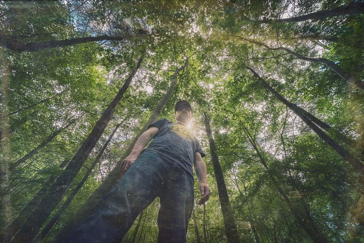 Low Angle View Of Man Standing In Forest