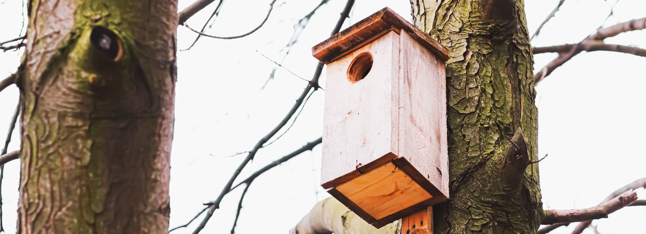 Low angle view of birdhouse on tree against sky