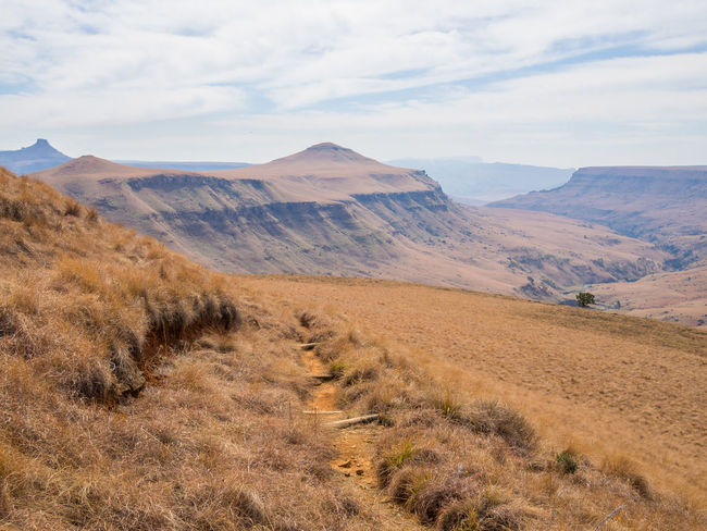 Drakensberg, South Africa Drakensburg Mountains, South Africa, Mountain Hiking Arid Climate Beauty In Nature Day Drakensberg Grass Landscape Mountain Mountain Range Nature No People Outdoors Scenics Sky Tranquil Scene Tranquility