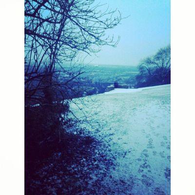 Será que a neve ama as árvores e os campos que beija tão docemente ?? Neve