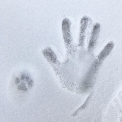 Cat footprint with my handprint 🐾🖐🏻❄️💕 Cats Of EyeEm Snow Close-up Cold Temperature Human Hand Winter Hand Nature Handprint