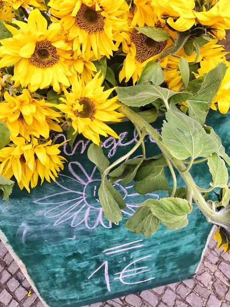 1 € Sunflowers Flower Yellow Plant Flower Head Local Consumerism Food Market Food Market Stall For Sale Market Sunflower Chalkboard Chalk Board On Sale