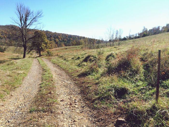 All Paths lead