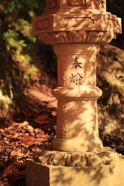 Fall of stone lanterns. Check This Out Instagram 紅葉 Canon Tamron Lens Canon70d Japan