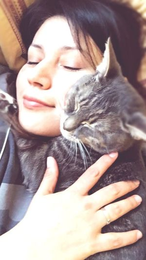 I Love My Cat Cat Photography Stress Relief Hug My Cat Hug One Person One Cat Noah!😻 Cat Whisker Cat Paws 😻
