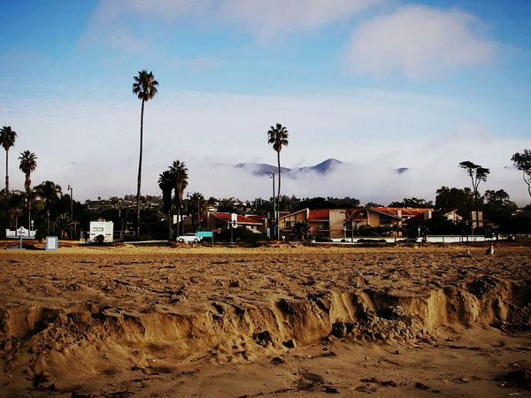Sand Ledge & Foggy Mountains Santabarbara California CA WestCoast Mountains Foggy Sand Sandledge Ledge Beauty In Nature Beautiful Palm Trees Palms Adapted To The City California Dreamin