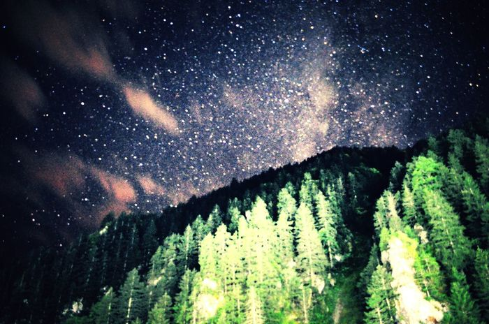 Scenics Tranquil Scene Low Angle View Cold Temperature Tree Snow Majestic Season  Snowing Winter Tranquility Star - Space Sky Beauty In Nature Nature Night Star Field Outdoors Astronomy Growth The Color Of Technology Built Structure Mountain Agriculture Landscape