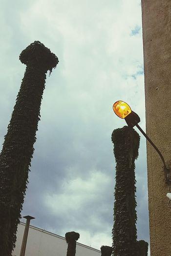 chmura z lampą. w pawilonie czterech kopuł kupuję przestrzeń, możliwość oddechu i pana z szatni.