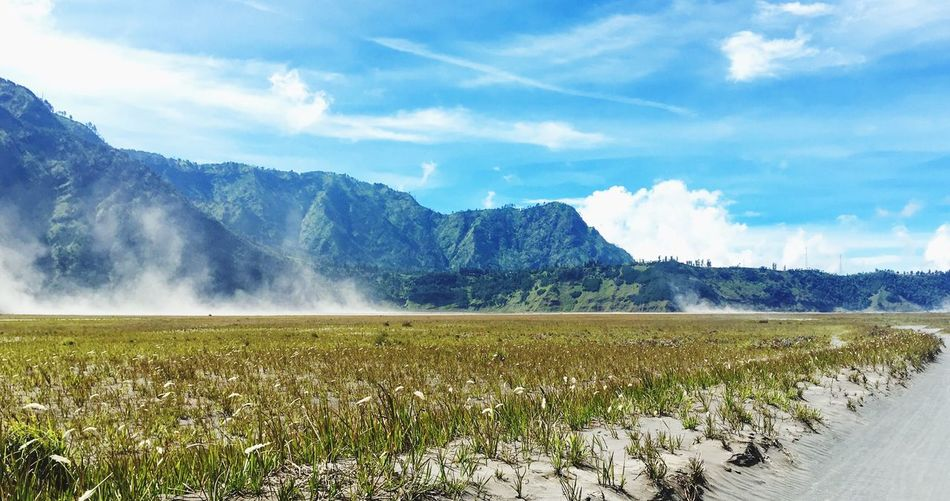 Surga di pulau jawa Nature Beauty In Nature Landscape Mountain Cloud - Sky Outdoors Wall Bromo INDONESIA Been There.