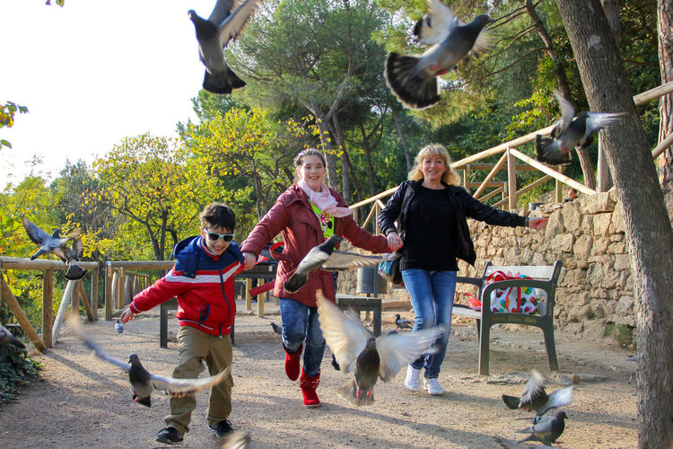 Children with mother chasing pigeons Chase Children Day Family Family Time Flying Fun Happiness Happy Lifestyles Mother Park Park Guell Park Güell, Barcelona Person Pigeon Pigeon Bird  Pigeons Running Showcase April Spring Springtime Togetherness Telling Stories Differently Showing Imperfection