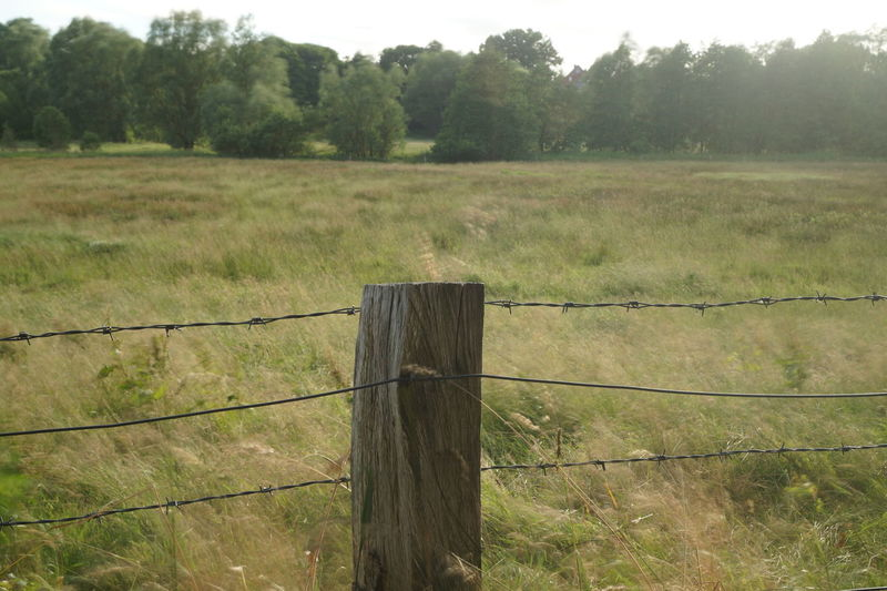 Beauty In Nature Field Grass Landscape Nature No People Outdoors Protection Safety Wooden Post