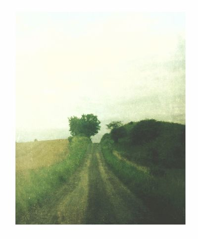 The end of my imagination Landscape Road Beauty In Nature Nature Tree Tranquil Scene Field No People Grass Tranquility