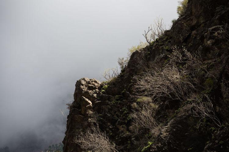 La Palma Barranco De Las Angustias rocks and fog Barranco De Las Angustias Fog La Palma Landscape Mountain Nature No People Rock Scenics Tranquil Scene