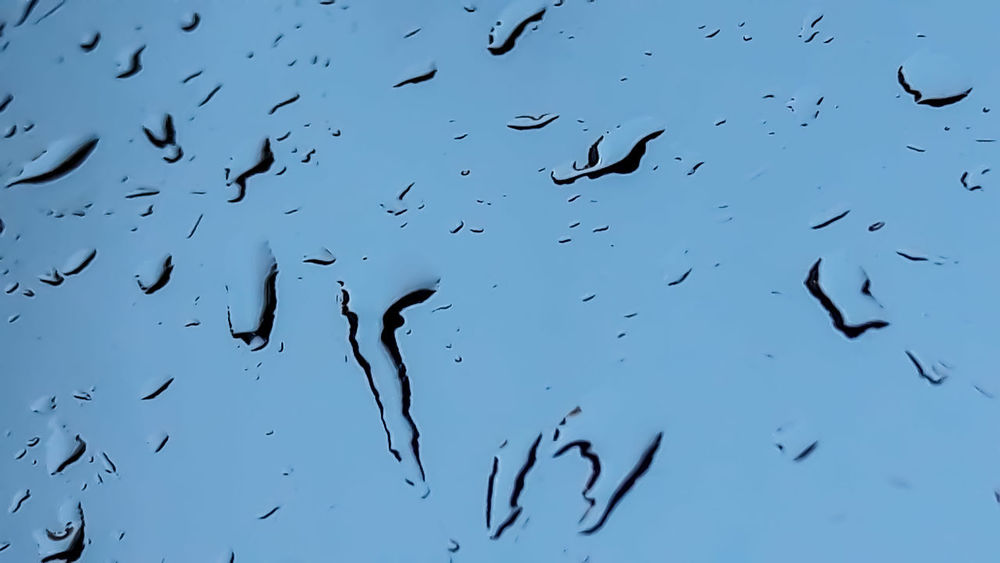 Pioggia Gocce Di Pioggia Gocce Vetro Rain Rain Drops Drops Of Rain Abstract Abstract Nature Bird Flying Animals In The Wild Large Group Of Animals Animal Wildlife Flock Of Birds Animal Themes Silhouette Day No People Outdoors Mid-air Nature Low Angle View Beauty In Nature Scenics