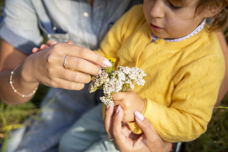 Mom and daughter toddler collect a bouquet of flowers yarrow close-up
