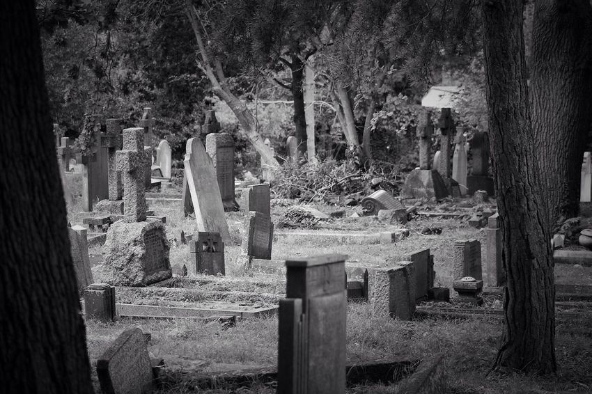 Cemetery Graveyard Canonphotography Canon South West London Burial Ground Churchyard Graveyard Beauty Creative Photography Black & White