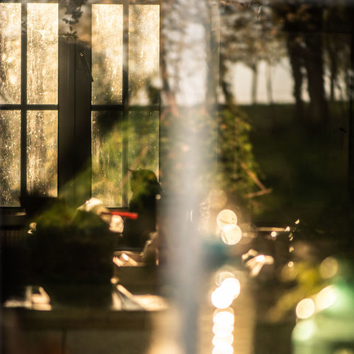 Defocused image of trees by glass window