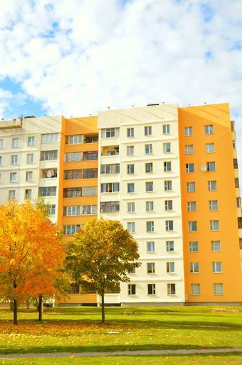 Minsk Tree Grass Architecture Cloud Clouds And Sky Clouds Orange Trees