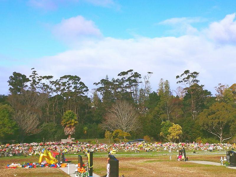WaikumeteCemetery Cloud - Sky Outdoors Nature Westauckland BlessedBeyondMeasure New Zealand Restinlove Familygathering