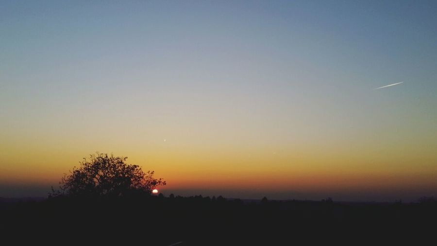 Nature Evening
