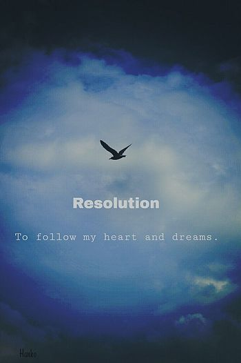 So far so good. I will never break my resolution. Clouds Bird New Year's Resolution Blue Lube Sky