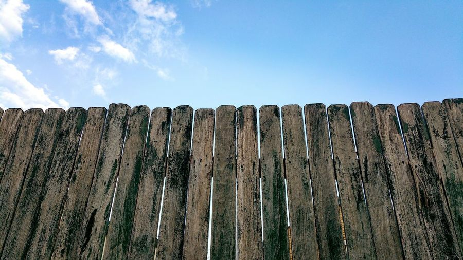 Low angle view of wood against sky